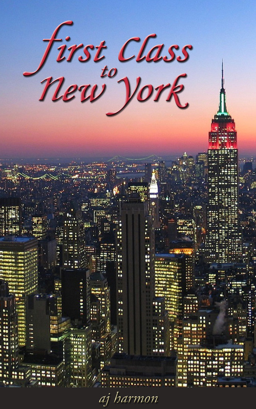 Product picture First Class to New York  (A Contemporary Romance Series)